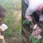 10-Month-Old Baby Girl Rescued After Being Buried Alive By Her Mother [Photos] 27