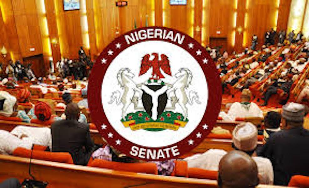 Nigerian Senate Shuts Down For Two Weeks Over Fear Of Coronavirus 1