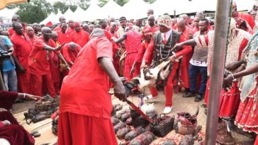 Priests, Herbalists Storms The Streets Of Benin To Wage War Against Killers, Kidnappers, Cultist 4
