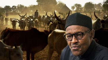 President Buhari Set To Launch Radio Station To Reach Out To Fulani Herdsmen 4