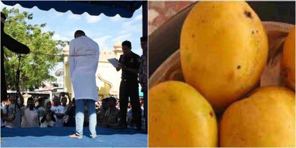 20-Year-Old Man Flogged 40 Lashes Of Cane For Eating Mango During Ramadan In Jigawa 1