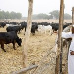 """It's True Buhari Gazetted Land In 36 States For Ruga Settlement' – Presidency 32"