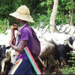South-East Governors, Three Others Reject Buhari's Ruga Settlements For Herdsmen 27