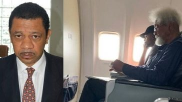 Wole Soyinka's Son Fires Back At 'Twitter Warriors' Over Dad's Flight Encounter With Young Nigerian 2