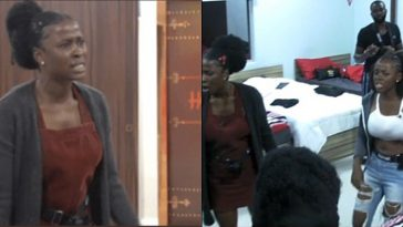 BBNaija: Drama As Another Fight Breaks Out Between Ella And Daine Over 'Fear Of Eviction' [Video] 7