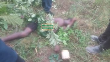 Man Kills His Friend Who Has Been Sleeping With His Wife For Over Two Years [Photos] 3