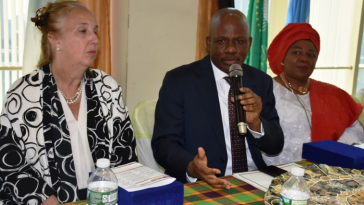"""""""Homeless And Jobless Nigerians In U.S Should Return Home"""" - CG Of Nigeria In New York 11"""