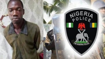 Tenant Who Fled After Raping And Killing His Landlady, Captured By Police In Ekiti 7