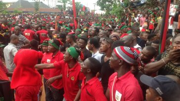 2023 Igbo Presidency With Northern Vice President Will End IPOB Uprising - Ohanaeze Youths 5