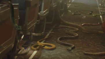 Man Arrested After Smuggling 88 Living Reptiles, Including 43 Poisonous Snakes Into A Plane 5