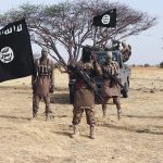 Boko Haram Kills Six People Including Pregnant Woman, Injures Seven Others In Borno 28