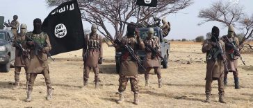 Boko Haram Kills Six People Including Pregnant Woman, Injures Seven Others In Borno 25