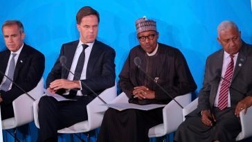 Climate Change: We Will Mobilise Nigerian Youths To Plant 25 Million Trees - President Buhari 6
