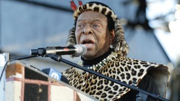 Cut Off The Manhood Of Any Man Found Guilty Of Rape In South Africa - Zulu King 5