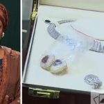Federal Govt Set To Auction Diezani's N14.4 Billion Jewelery, Other Forfeited Properties 27