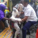 Two children dead, 23 Others Seriously injured In Lagos Gas Explosion 28