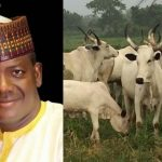 Zamfara Government Bans Selling Of Cow Without Receipts And Photos With Buyers 27