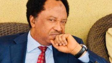 Senator Shehu Sani Arrested And Detained For Extorting N8.6 Million From A Businessman 6