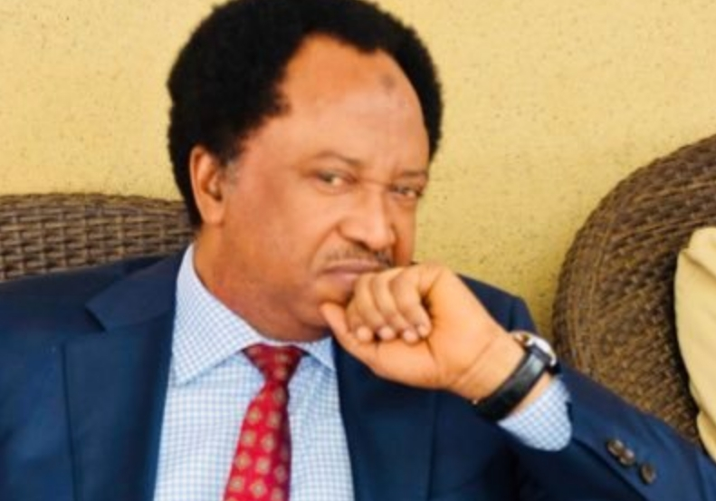 Senator Shehu Sani Arrested And Detained For Extorting N8.6 Million From A Businessman 1