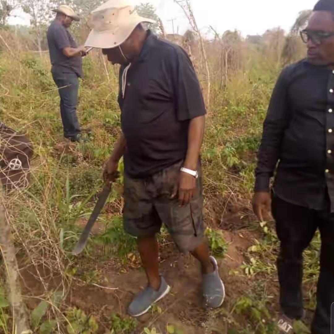 Former President, Olusegun Obasanjo Spotted Harvesting Yam In His Farm In Ogun [Photos] 3
