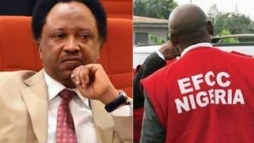 EFCC Forces Senator Shehu Sani To Declare His Assets, Blocks His Bank Accounts 3