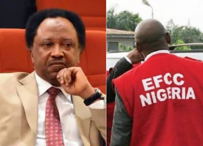 Senator Shehu Sani Slams EFCC With N100 Million Lawsuit For Unlawfully Detaining Him 1