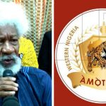 """Amotekun Is Going Nowhere, It Has Come To Stay"" – Wole Soyinka Tells Buhari's Government 28"
