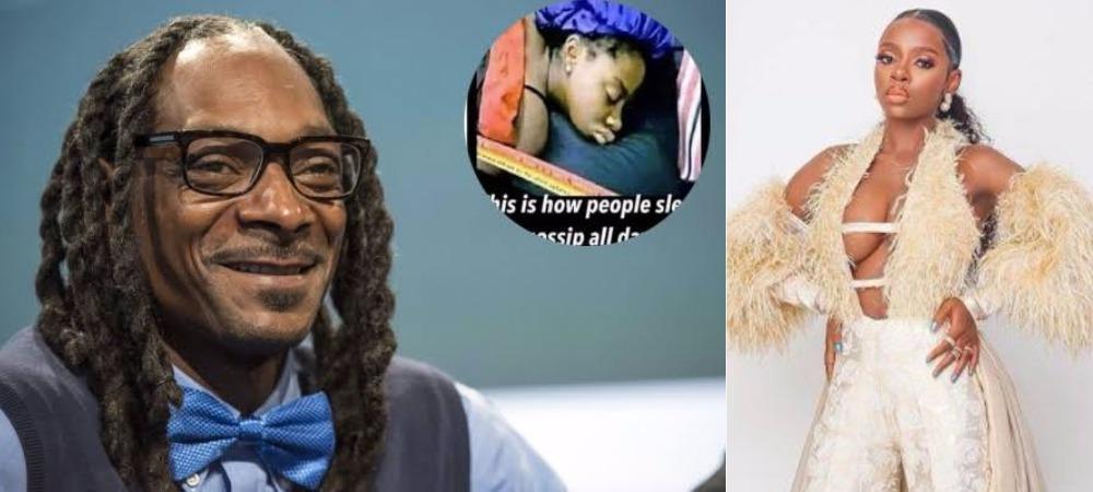 American Rapper, Snoop Dogg Mocks BBNaija's Diane Russet On His Instagram Page 1