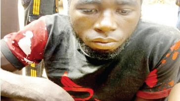 Police Arrests Armed Robber Who Wanted To Use His Robbery Proceeds To Marry In Bauchi 3