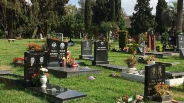 Rich People In Hollywood Are Rushing To Buy Designer Graves As Coronavirus Spreads In US 6