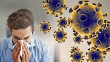 Nigerian Government orders closure of all universities, nursery, primary and secondary school to curb coronavirus 12