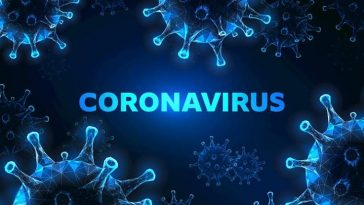 Nigeria Records 20 New Cases Of Coronavirus COVID-19, Total Now 343 7