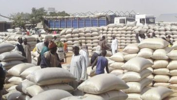 Drama As Councillor Disappears With 30 Bags Of Grains Meant For Coronavirus Relief In Niger State 3
