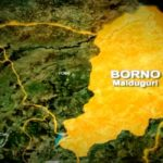 COVID-19: Two Patients Flee After Testing Positive For Coronavirus In Borno State 27
