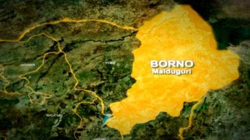 COVID-19: Two Patients Flee After Testing Positive For Coronavirus In Borno State 3