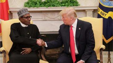 Trump Calls Buhari On Phone, Discusses About Coronavirus In Nigeria And United States 3