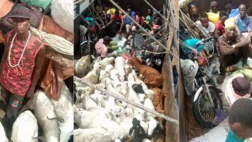Security Officials Intercept Two Lorries Transporting Passengers Hidden Among Animals From Kano To Kaduna 5