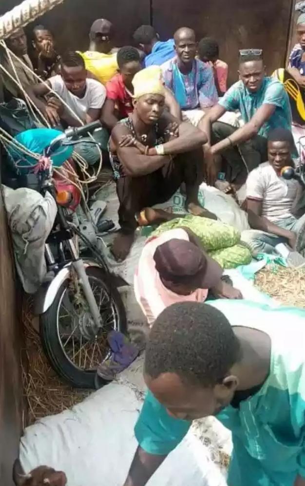 Security Officials Intercept Two Lorries Transporting Passengers Hidden Among Animals From Kano To Kaduna 2