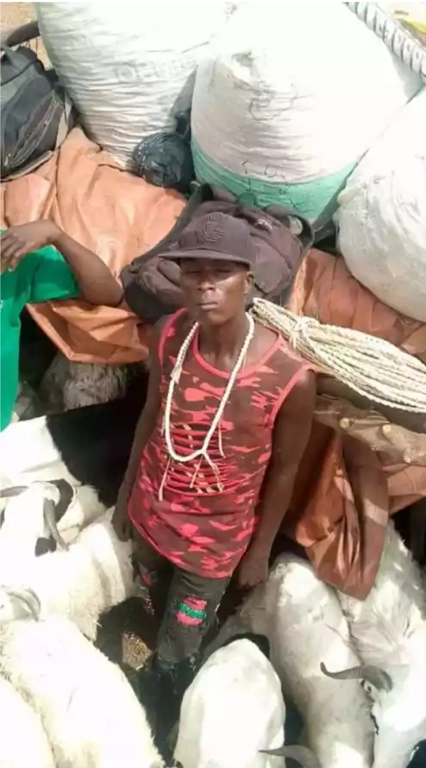 Security Officials Intercept Two Lorries Transporting Passengers Hidden Among Animals From Kano To Kaduna 3