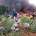 All Passengers Dead As Plane Conveying Coronavirus Medical Supplies Crashes In Somalia 27