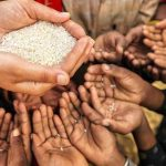 Nigeria May Face Food Starvation Due To COVID-19 Lockdown – Farmers 28