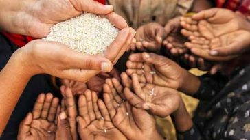 Nigeria May Face Food Starvation Due To COVID-19 Lockdown – Farmers 1