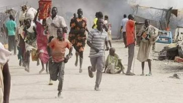 Over 15 Persons Feared Dead As Two Communities Clashes Over A Pig In Adamawa State 1