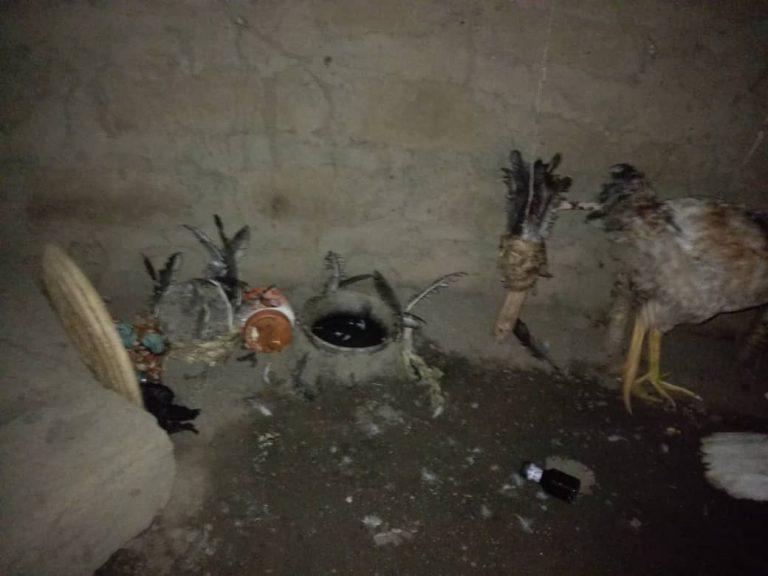 Notorious Criminal, Gana Escapes Arrest As Nigerian Soldiers Raid His Shrine In Benue [Photos] 3
