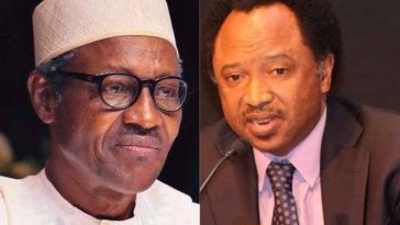 Buhari Cancelled His Presidential Broadcast Because Nigerians Planned To Stone Him – Shehu Sani 3