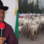 """It's An Insult For Me To Be Struggling With Cows On The Road"" - Umahi Bans Movement Of Cattle In Ebonyi 28"