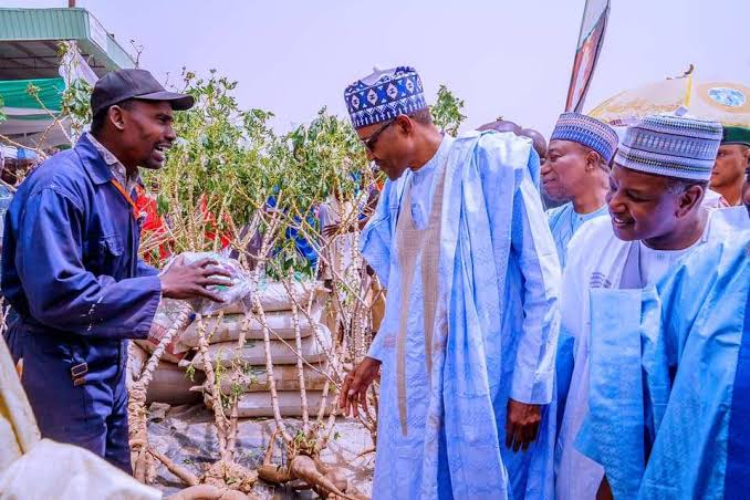 """Produce More, Nigeria Has No Money To Import Food"" - President Buhari Tells Farmers 1"