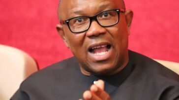 Borrowing For Consumption Is The Worst Form Of Corruption – Peter Obi 11