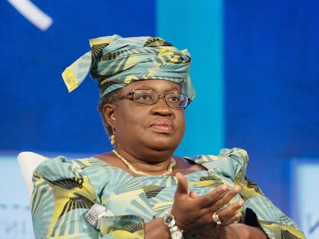 Egypt Opposes Okonjo-Iweala's Nomination As Director-General Of World Trade Organisation 1
