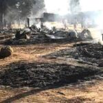 Boko Haram Terrorists Kills 69 People, Steals 1200 Livestocks, Razes Down Village In Borno State 28